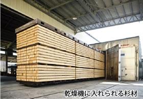 乾燥機に入れられる杉材