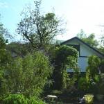 秦野市薪ストーブのある自然素材の家