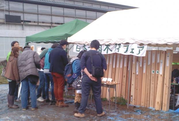 愛川町菜の花まつり 菜の花まつり 神奈川 自然素材の家 トレカーサ工事