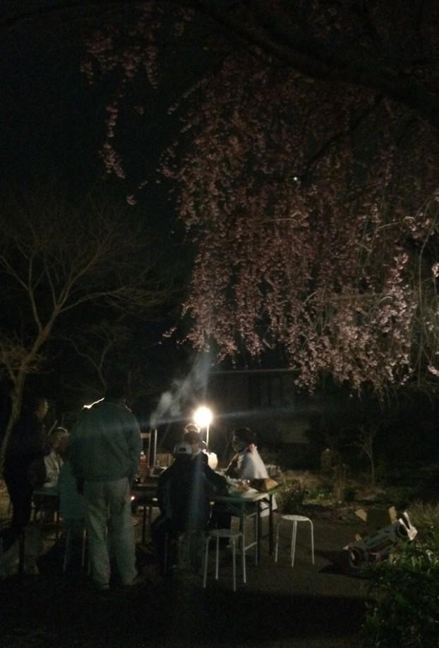 お花見愛川町