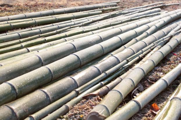 竹を使って創る夢の住まい創りアート