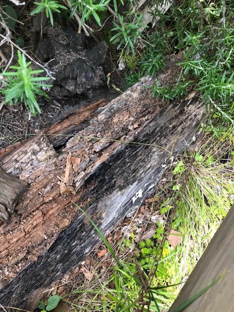 木とアイアンの看板